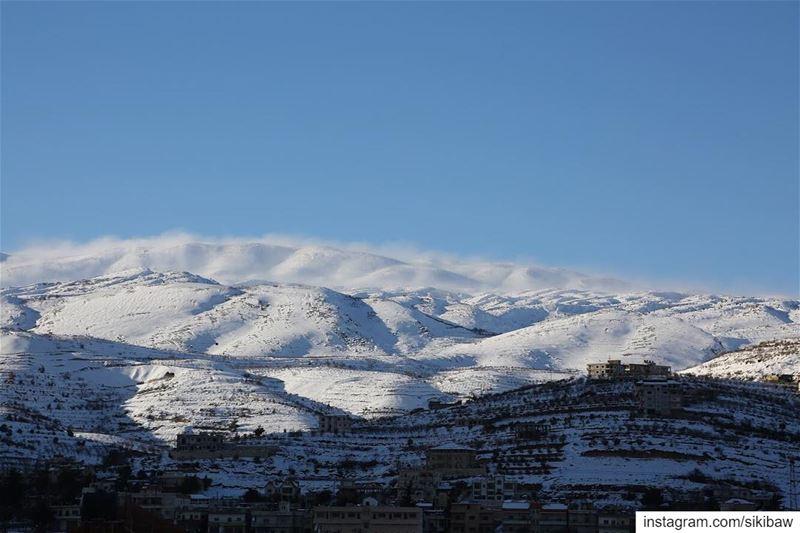 Красивого снега не бывает много, последняя на сегодня 😃. ливан горы снег (Beqaa Governorate)