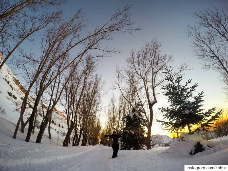 Reason to love winter snow lebanon livelovelebanon lebanonoutdoor ...