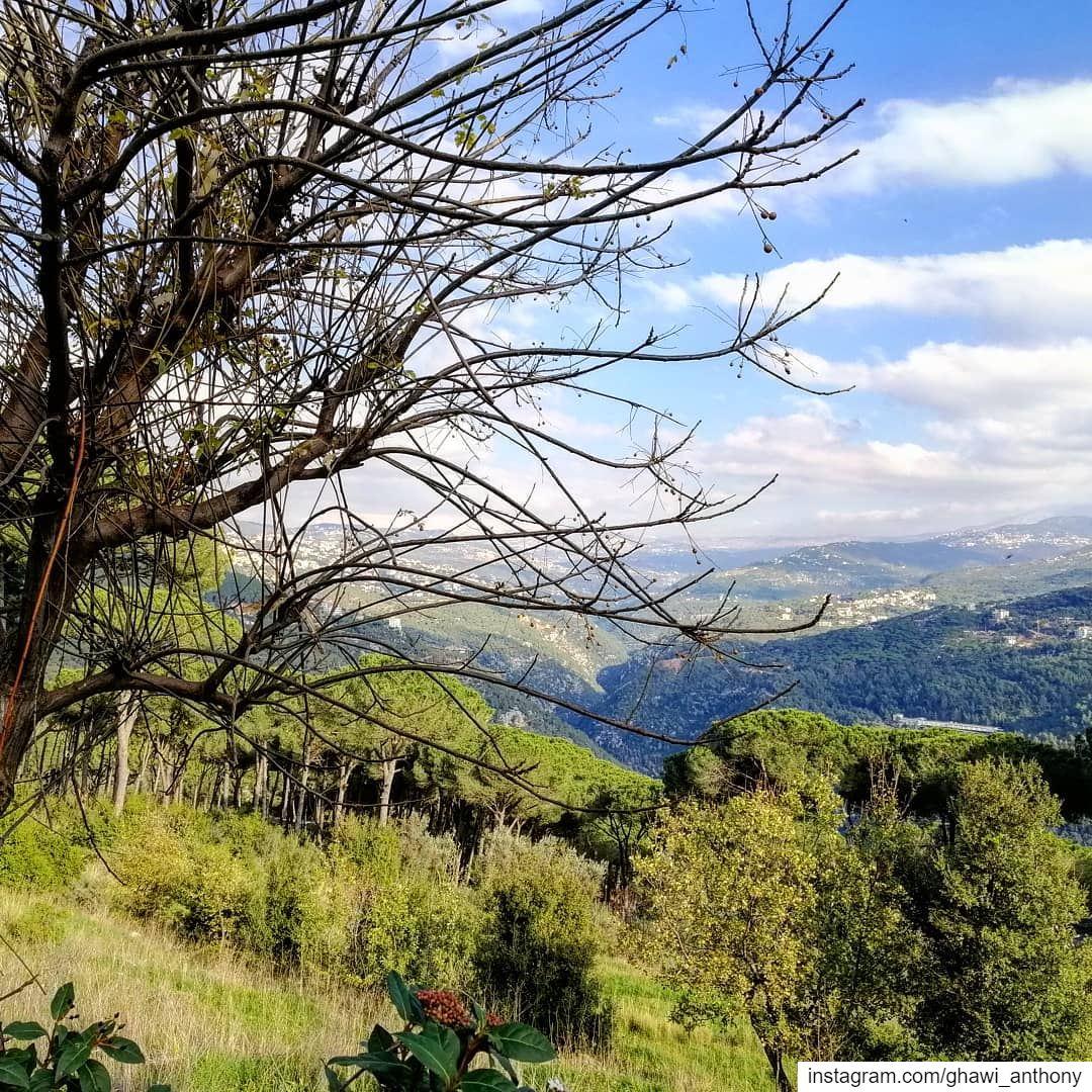 One of my favorite shots💚Happy weekend everyone😀... (Beit Meri, Mont-Liban, Lebanon)