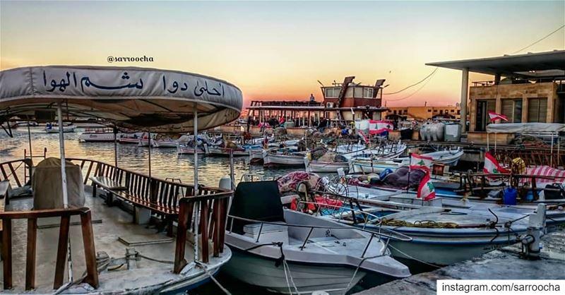 أحلى دوا شم الهوا 🌊 takenbyme ptk_Lebanon visitlebanon ... (مدينة صور - Tyre City)