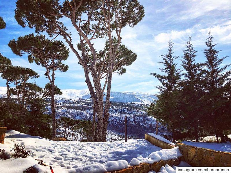 barouk chouf ... (Bâroûk, Mont-Liban, Lebanon)