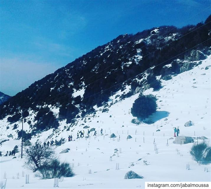 A Snowshoeing experience, like no other... JabalMoussa unescomab ... (Jabal Moussa Biosphere Reserve)