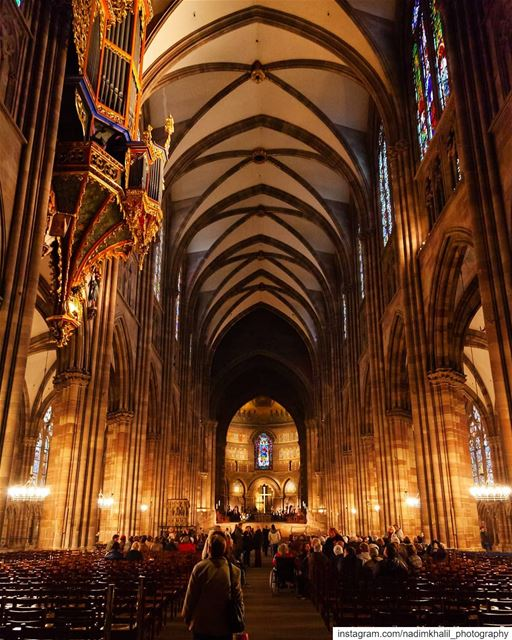 Cathédrale Notre-Dame de Strasbourg........................................ (Strasbourg, France)