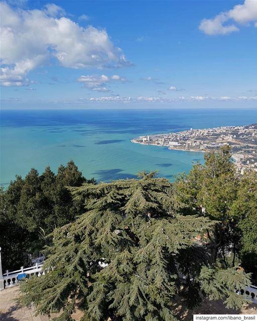 🇱🇧🇧🇷 Nada melhor do que iniciar o dia com uma vista dessa. Bom dia, Líb (Harîssa, Mont-Liban, Lebanon)