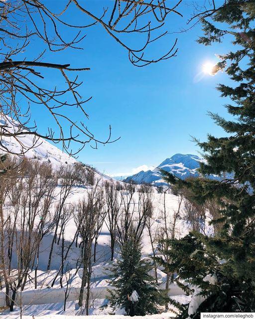 White Laklouk 😍❄️🌨 @livelovelaklouk snow livelovelaklouk ... (El Laklouk, Mont-Liban, Lebanon)