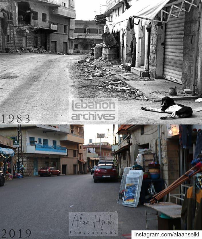 Baissour - 1983 VS 2019 ❤️... Hseiki Lebanon beirut nature ... (Baïssoûr, Mont-Liban, Lebanon)
