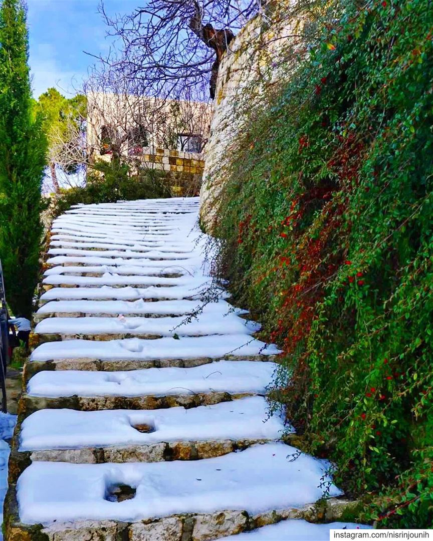 Imagine if you could walk up the stairs and get a huge hug of them you... (Maasser Ech Chouf, Béqaa, Lebanon)