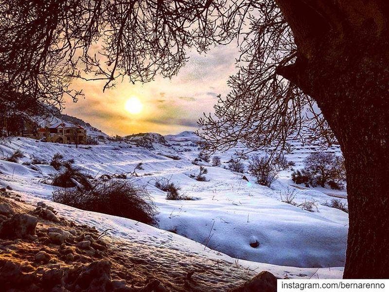barouk chouf lebanon snow livelovelebanon livelovechouf ... (Bâroûk, Mont-Liban, Lebanon)
