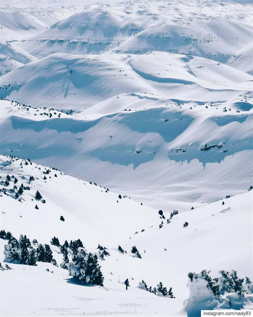 Down we go 🎿... backcountryskiing skitouring lebanon snow ski ...