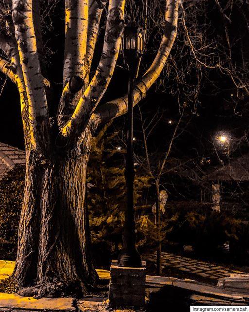 Strangers of the night......... strangers lights street love ...