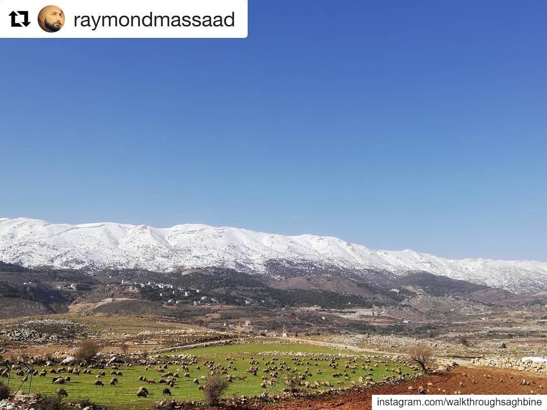 Repost @raymondmassaad ・・・ nofilter nofilterneeded landscape season ... (Saghbîne, Béqaa, Lebanon)