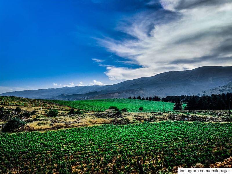 ig_masterpiece @topsunsetshots @sky_sultans @ig_fotogramers @worldwidecapt (Château Kefraya)