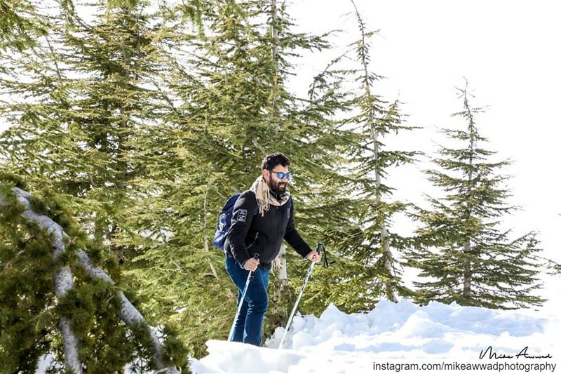 Finally we reached the top! livelovebeirut livelovelebanon pysglb snow...