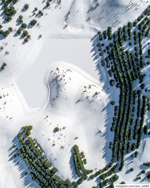 Frozen lake ❄️ ... barouk shouf chouf shoufcedarreserve lebanon ... (Al Shouf Cedar Nature Reserve)