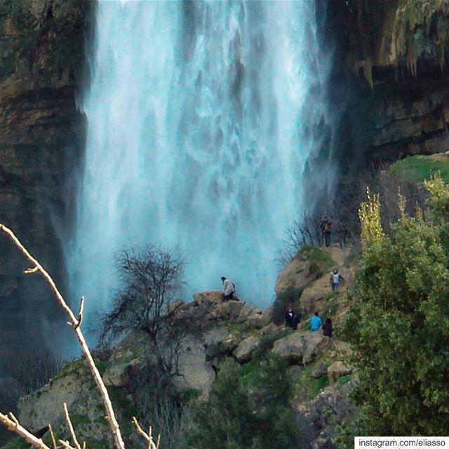 .–––––––––––––––––––––––––––––––––––Study nature, love nature, stay... (Jezzîne, Al Janub, Lebanon)