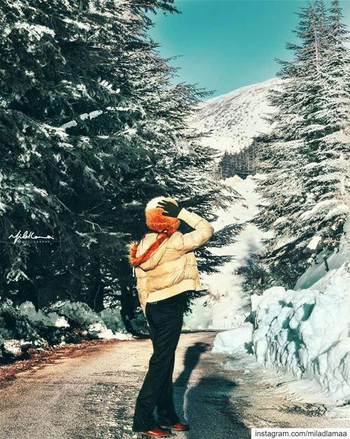❤@miladlamaaphotography @na3ima.z snow barouk lebanon🇱🇧 arez chouf...