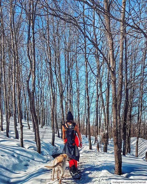 Every path has a message 💬 🐕📸 @rawadthenomad 😊........ (AHLAM Golf & Mountain Village)