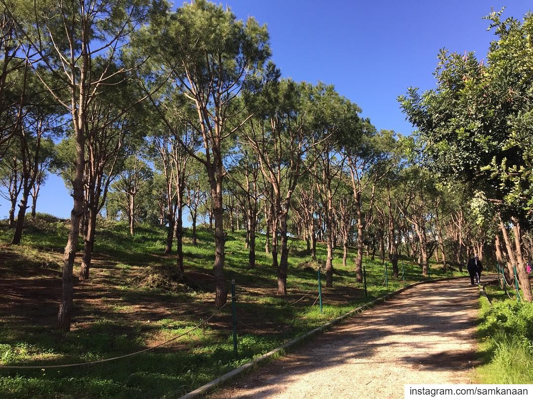 morningwalk nature outdoors ventureout microadventure sundayfunday ... (Horsh Beirut)