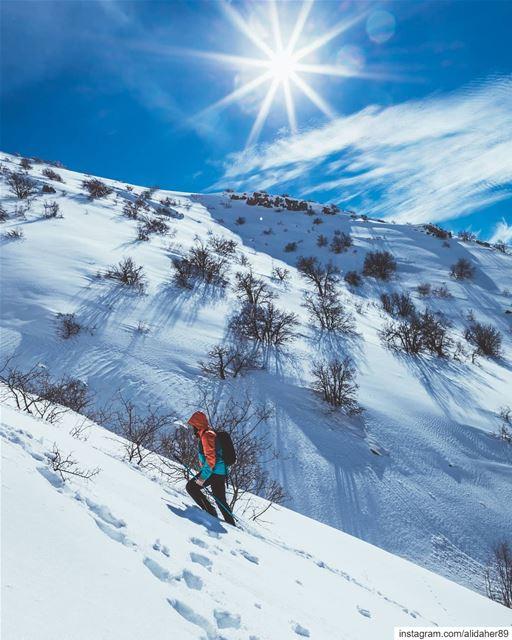 Doing what you like is freedom ☀️.... snowhike wonderlust sports... (Maaser El Shouf Cedar Reserve محمية ارز معاصر الشوف)