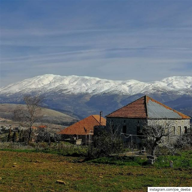 ~Raised by the snowy mountain~ (Marjayoûn, Al Janub, Lebanon)