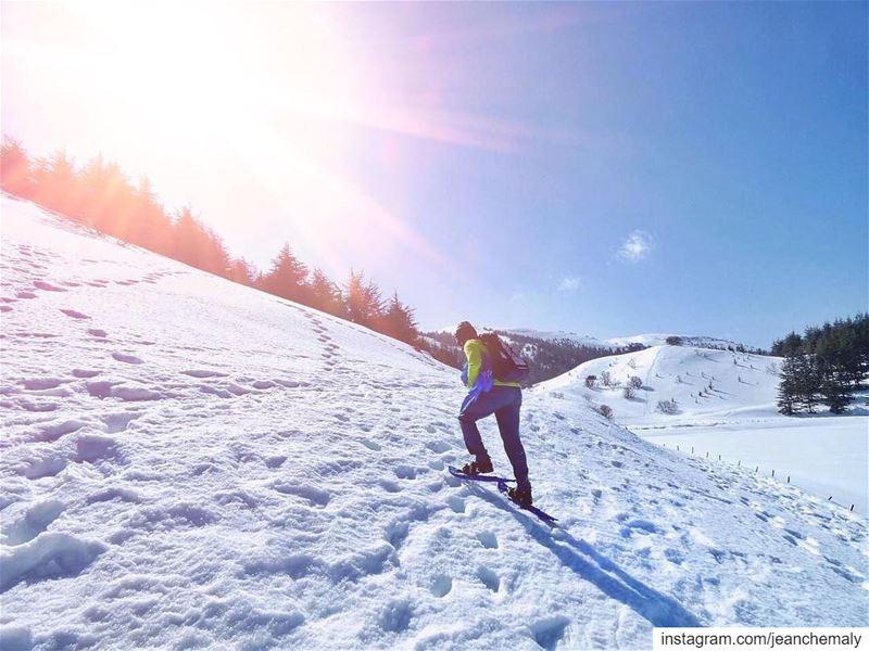 snowshoeing hiketheworld🌎 ...