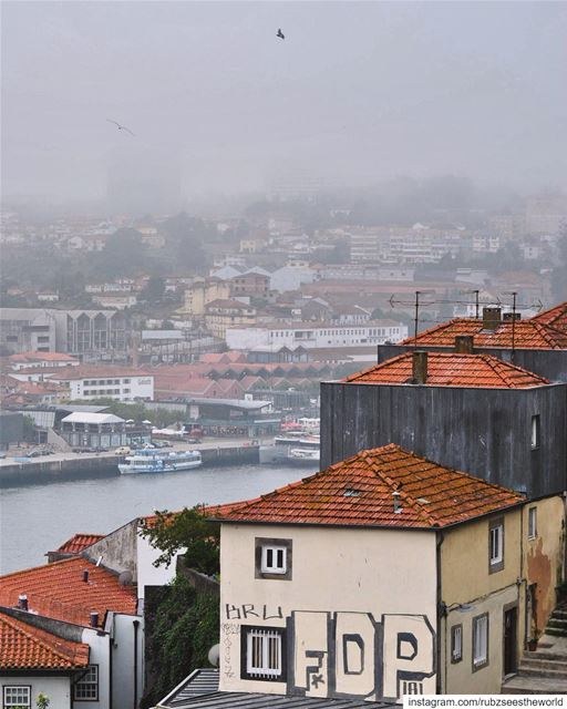 Porto, Lisbon: hiding behind the fog. rubzseestheworld... femmetravel... (Porto, Portugal)