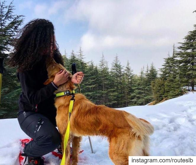 The journey of life is sweeter when traveled with a dog ❄️🌲🐶.. routes... (Niha, Liban-Nord, Lebanon)