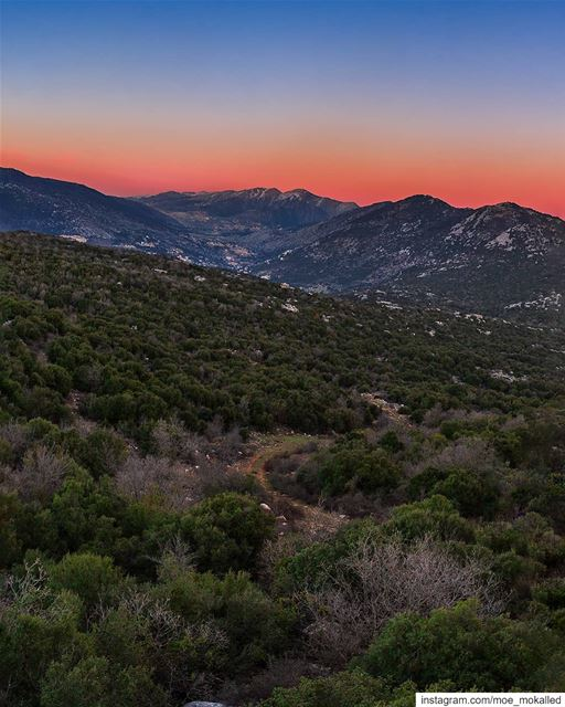 "Colors are the smiles of nature. ""Leigh Hunt"" Vibrant Sunset from Séjoud � (Séjoud, Al Janub, Lebanon)"