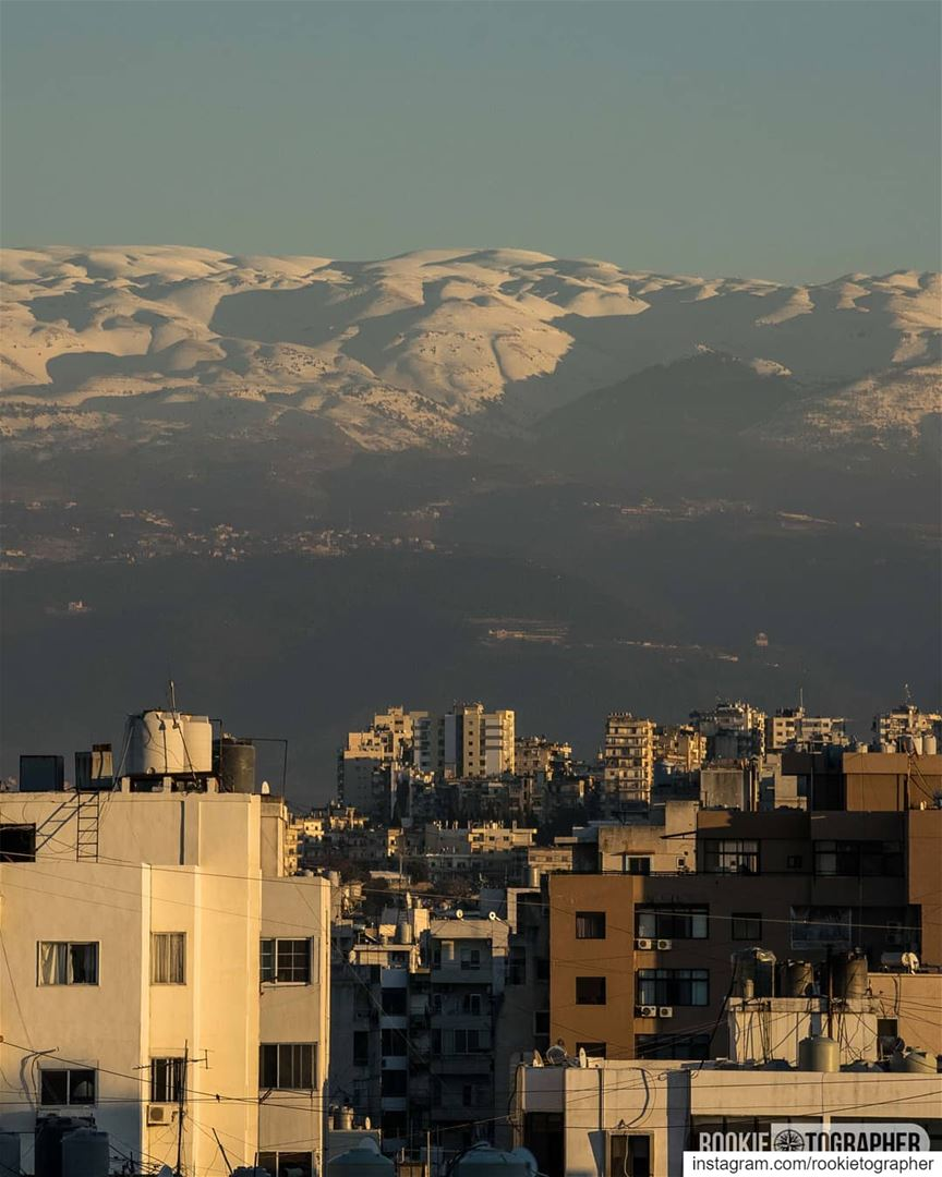 Concrete jungle 🏙 rookietographer ........ tripoli ... (Tripoli, Lebanon)