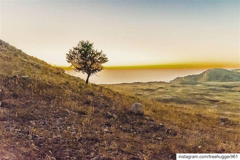 ______________________________Check out my other accounts@jadmakarem@ja (Falougha, Mont-Liban, Lebanon)