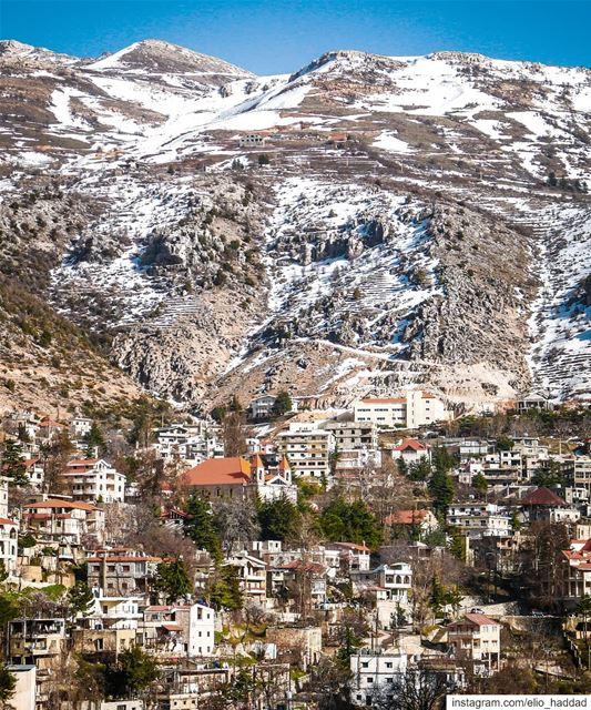 Lebanon - Tannourine 🇱🇧 livelovebeirut livelovetannourine ... (Tannurin At Tahta, Liban-Nord, Lebanon)