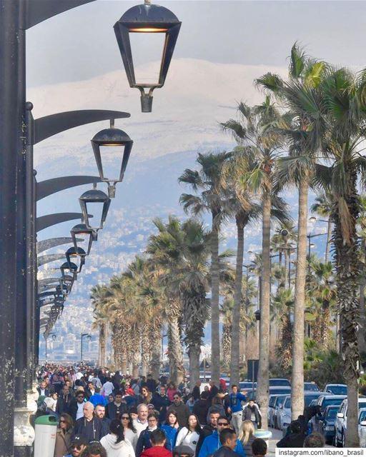 🇱🇧🇧🇷 O melhor jeito de começar o dia é caminhando pela Corniche (calçad (Beirut, Lebanon)