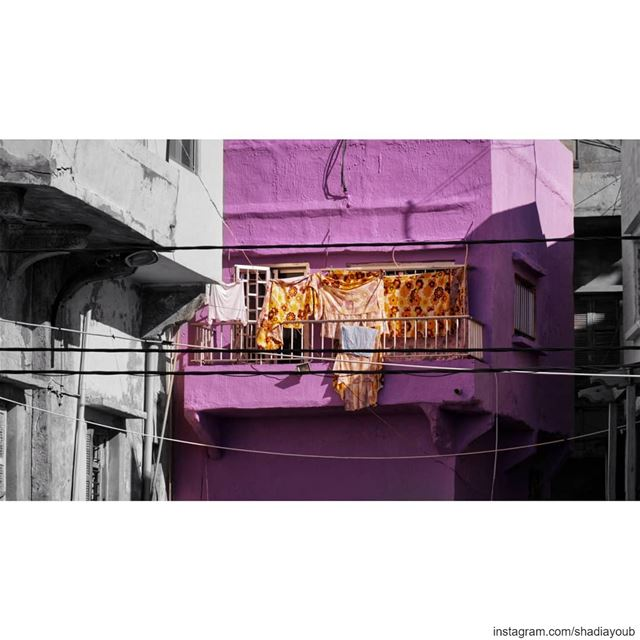 Purple haze. ... (Lebanon)
