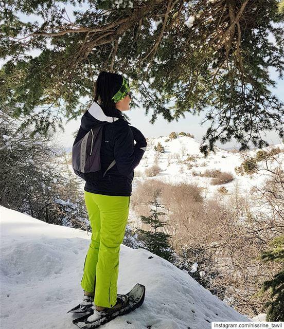 ainzhalta cedars reserve snowshoeing winter outdoorphotography ... (Arz Aïn Zhalta)