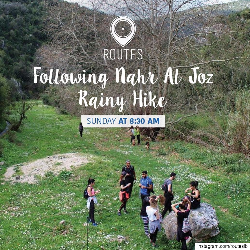 Let's go a bit adventurous this winter💦Hiking under the rain and... (Kaftoûn, Liban-Nord, Lebanon)