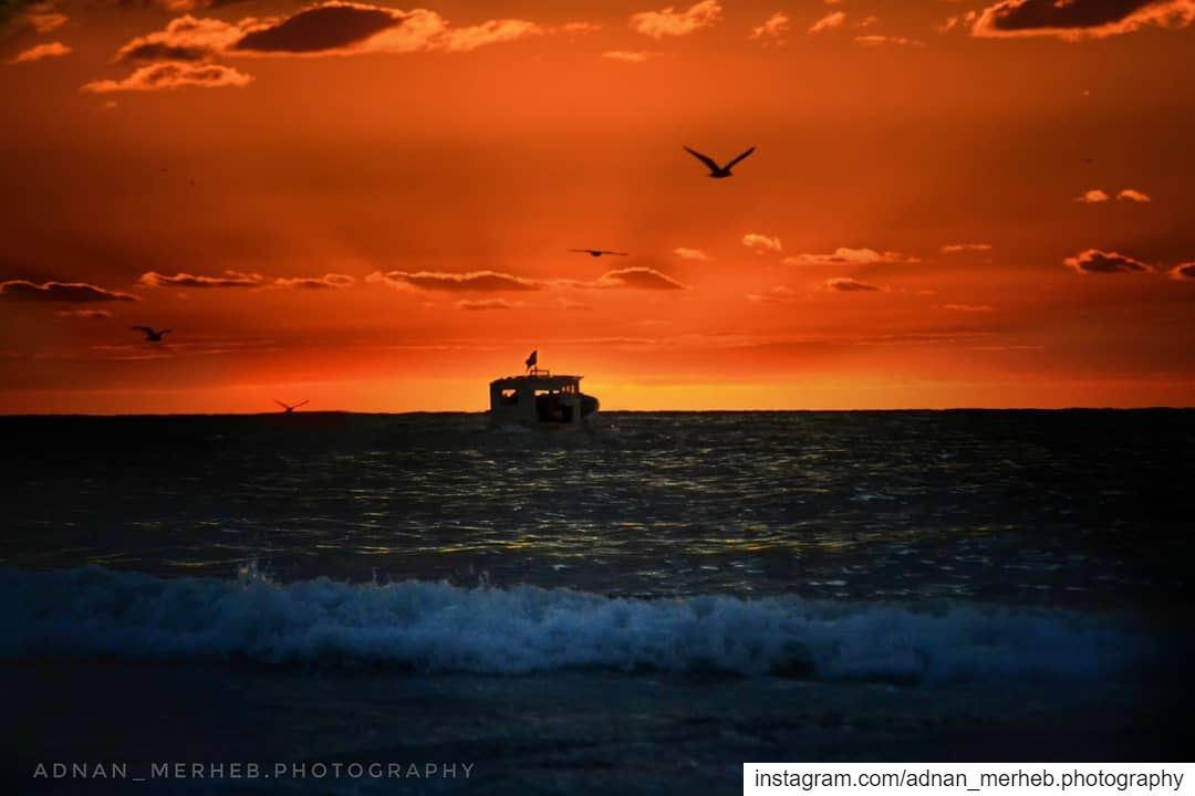 🌇 Sunset from mina❤️ sunset sunrise sun TagsForLikes TagsForLikesApp ... (كورنيش الميناء طرابلس)