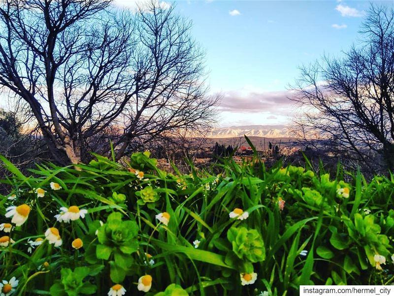 A mix of spring & Winter by @firassafwan hermel hermel_city bekaa ...
