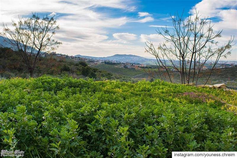 صباح الخير 🌱⛅ nature lebanon southlebanon houminealfawka sky ...