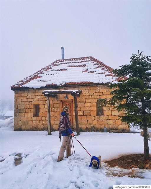 Come Habanero, let's have some Valentime💏 DitchedByHabanero😞........ (Faraya, Mont-Liban, Lebanon)
