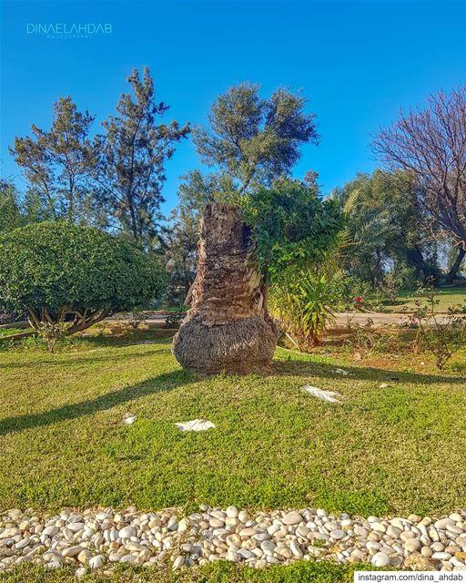 L'étude de l'ombre servait à déterminer les heures de la journée.Ces... (USJ Campus Liban Nord)