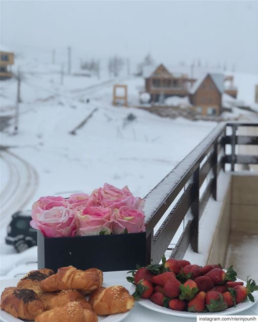 morning  lebanon  snowy  roses  momentsovermountains  momentslikethese ... (The Ridge - Laklouk)
