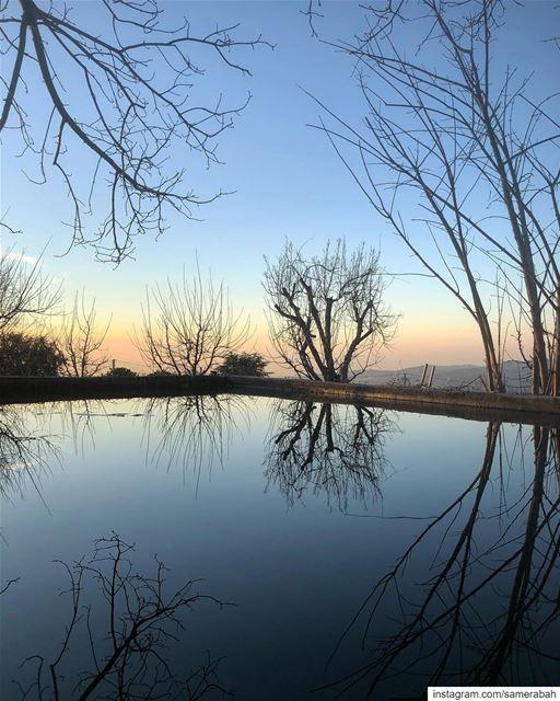 Blue............ relflection bluehour tree pool lake ... (Lebanon)