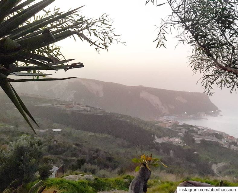 Ras Ech-ckakaa as seen from Chekka-El Heri................ (Chekka)