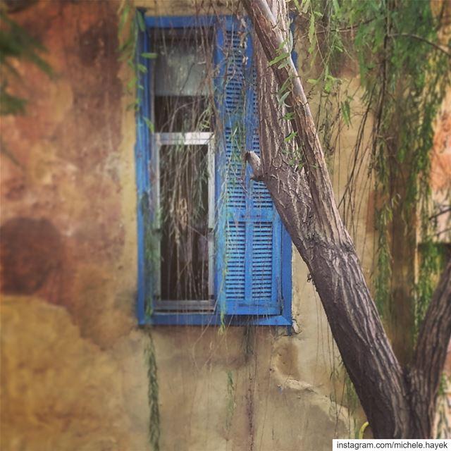 Derrière cet ancien volet, j'ai imaginé qu'une histoire d'amour, un soir... (Beirut, Lebanon)