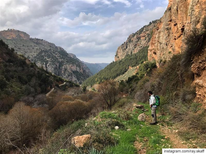 Into The Valley‼️.... ............... lebanon nature ... (Into The Wild)