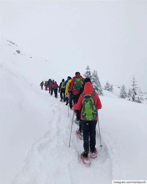 ❄️ wintervibes snoweverywhere lebanon lebanonmoments hikingadventures... (Cedars of God)