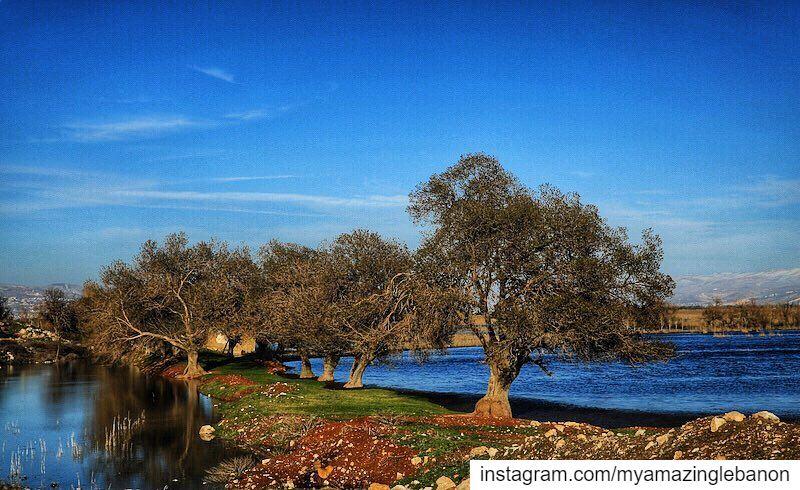 a7labaladbil3alam 🇱🇧..... photo love photograph photography ... (`Ammiq, Béqaa, Lebanon)