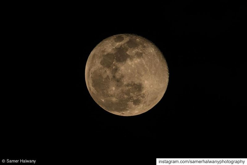 The visitor!....from last night!!! The fullmoon in its details and ...