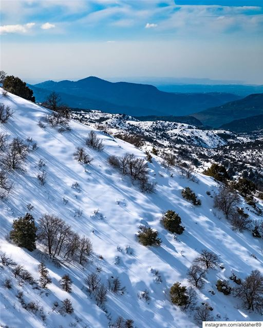 The white paradise ❄....... landscapephotography naturephotography... (Maasser Ech Chouf, Béqaa, Lebanon)