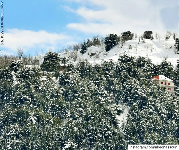 Beautiful snowy mountains❄🌲❄🌲❄ (Swipe 👉)................. (Hadath El Jebbeh - Bcharré)